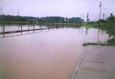 Vybreženie rieky Torysy